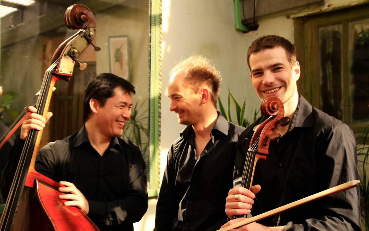 Trio Nepenthes à la maison d'hôtes Puy-de-Dôme